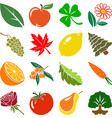 flat floral icons vector image