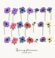 hand drawn anemones spring flowers set garden vector image vector image