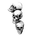 hand drawn skulls vector image