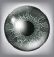 human eye iiris close up healthy medical vector image vector image