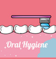 oral hygiene brushing tooth and gum inside mouth vector image vector image