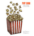 package full popcorn and popping corn vector image
