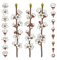 set color images with blossoming spring branches vector image