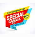 this weekend only special offer sale campaign vector image vector image