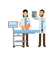 two veterinary doctors examining red cat in vet vector image