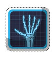 x-rays medical isolated icon vector image vector image