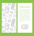exotic fruits banner template with place for text vector image vector image