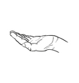 sketch of the hand vector image
