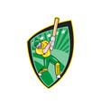 Australia Cricket Player Batsman Batting Shield vector image vector image