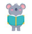 back to school education cute koala reading book vector image vector image