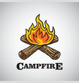 campfire logo dssign vector image vector image