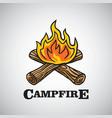 campfire logo vector image vector image