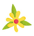 flower petals leaves foliage nature isolated icon vector image vector image