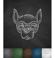 hipster dog icon Hand drawn vector image vector image