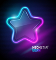 neon colorful star vector image vector image