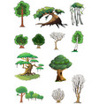 trees and woods vector image vector image