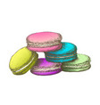color macaroon biscuit sweet dessert vintage vector image