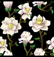 Delicate seamless pattern with magnolia