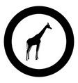 giraffe black icon in circle vector image vector image