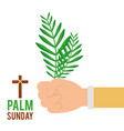 palm sunday hand holding branch faith celebration vector image vector image