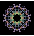 Round Mandala Color Dark vector image