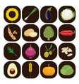 set of different kinds of vegetables vector image vector image