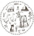 Set of hand drawn farm animals vector image vector image