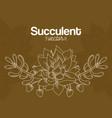 succulent desert plants vector image vector image
