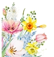 Watercolor floral composition vector image vector image