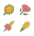 wild flowers color icons set helianthus vector image vector image
