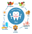 Dental friendly diet vector image