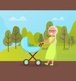 grandma walking with buggy in green park vector image vector image