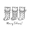 cat christmas coloring page new year vector image