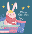 merry christmas celebration cute rabbit with scarf vector image vector image