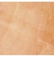 Wood natural background vector image
