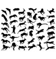 animals in a jump vector image vector image