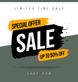 banner template sale shop now with limited time vector image vector image