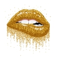 glitter gold sparkles lips vector image vector image