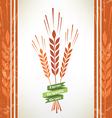 grain symbol vector image