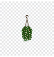 isolated hanging isometric blossom element vector image vector image