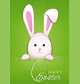 easter bunny on a green vintage background easter vector image vector image