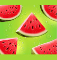 watermelon realistic on green background vector image vector image