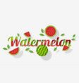 word watermelon design in paper art style vector image
