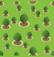3d forest trees pattern vector image