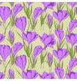 crocus seamless pattern 2 vector image vector image