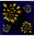 Fireworks in the dark sky vector image