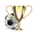football championship soccer ball and golden cup vector image vector image