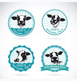 set a dairy cows label on white background vector image