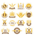 wheat grain logo flour farm food for breakfast vector image