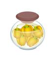 A Jar of Pickled Orange Bell Peppers vector image vector image